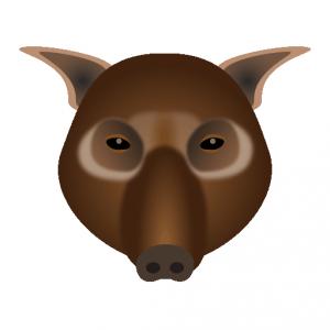 イノシシ_猪