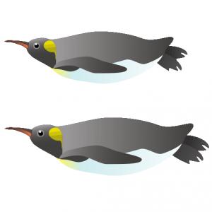 ペンギン_人鳥_penguin