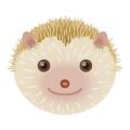 ハリネズミ_針鼠