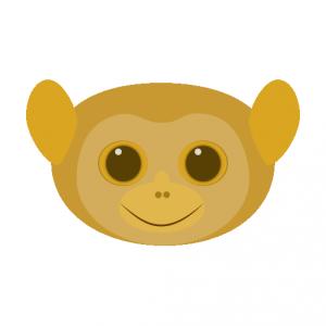 メガネザル