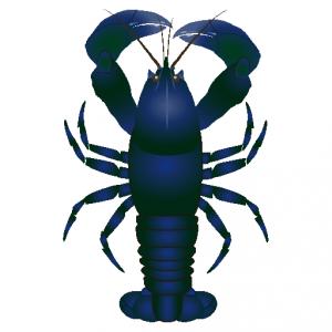 ロブスター_海蝲蛄_lobster