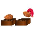ぺんぎん_チョコレート