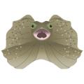 エリマキトカゲ