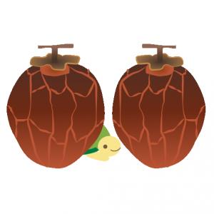 かめ_干し柿