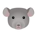 チンチラ_灰鼠