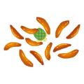 かめ_柿の種
