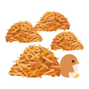 ぺんぎん_ココナッツクッキー