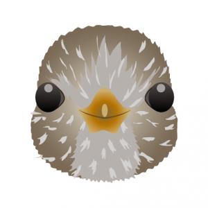 ムクドリ_椋鳥